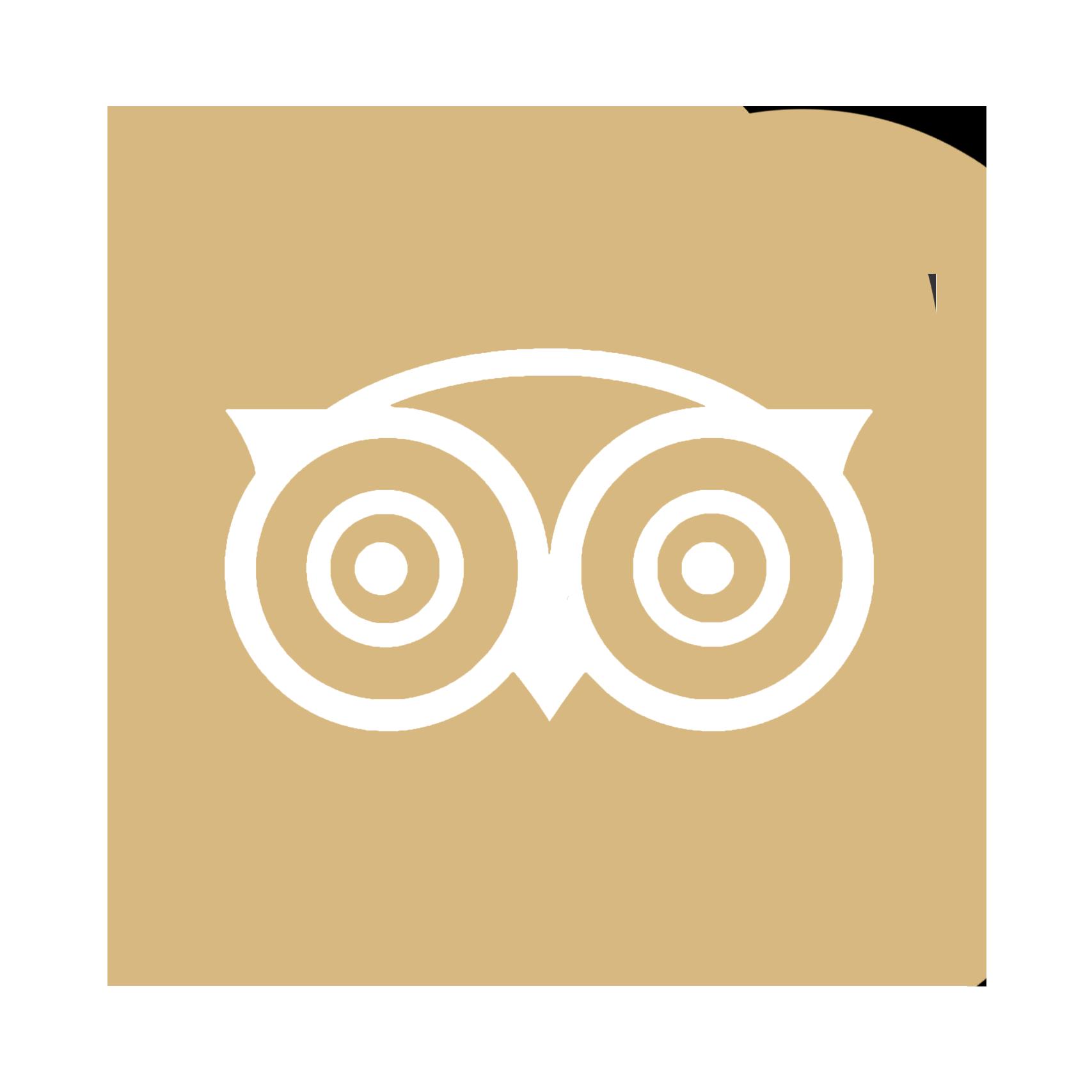tripadvisorgold